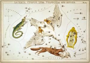 Sidney_Hall_-_Urania's_Mirror_-_Lacerta,_Cygnus,_Lyra,_Vulpecula_and_Anser