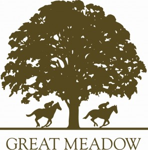 Great Meadow Public Night @ Great Meadow