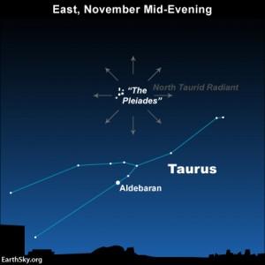 radiant-north-taurids